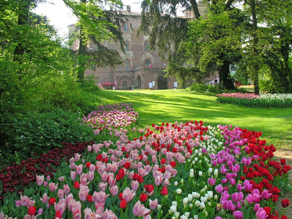castello-di-pralormo_messer-tulipano-00