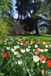 castello-di-pralormo_messer-tulipano-0b